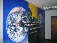 Business Wall Murals Add to Varied Interiors- Tampa, Florida